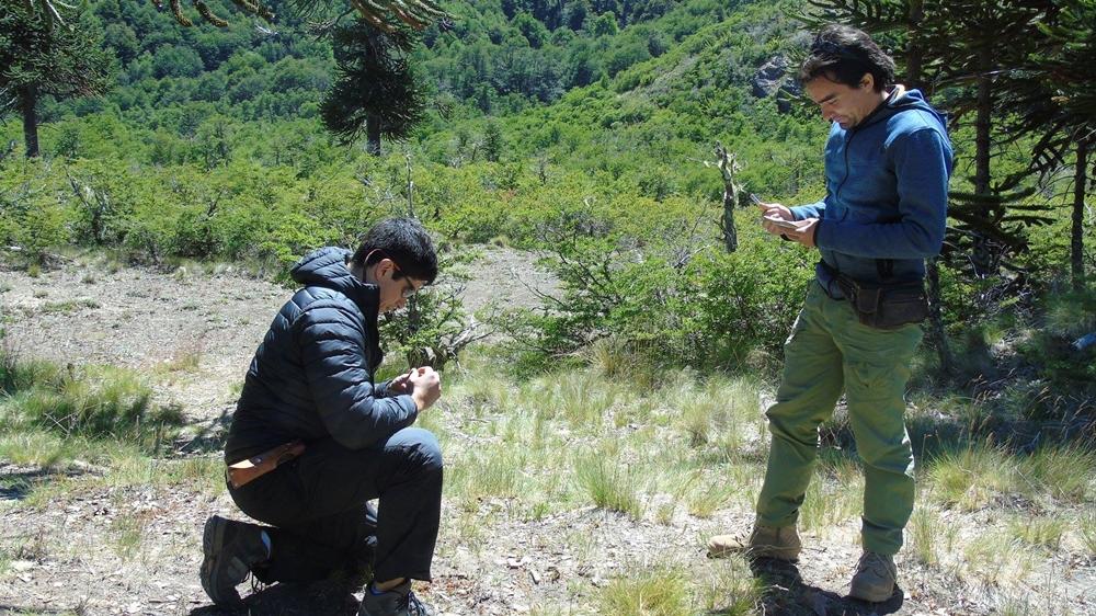 """""""A la caza del volcán"""": alumno de la UDA investiga las principales erupciones ocurridas en Chile"""