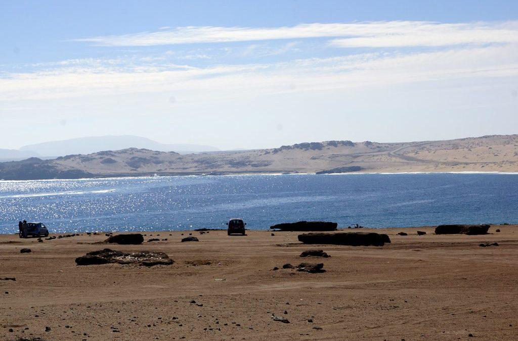 La Memoria de un Océano: Investigadores de la UDA descubrieron evidencias del mayor tsunami que se tenga registro en las costas de Atacama